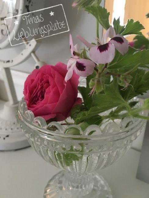 Erdbeer_Rose_Duftgeranie