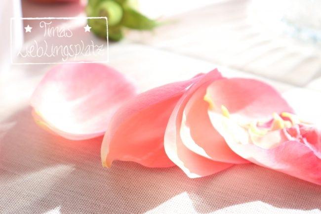 rosa_maedchengeburtstag_15